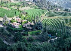 Com a chegada da Primavera, a Quinta de Covela sugere uma escapada em família ou um romântico passeio a dois numa Quinta com história.