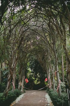 dreamy ceremony spot under the trees - Wild Whim Photography - view more here: http://ruffledblog.com/camarillo-botanical-wedding/