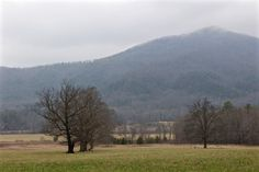 Cades Cove in the Winter Cades Cove, Photo Galleries, Country Roads, Mountains, Photo And Video, Gallery, Winter, Nature, Travel