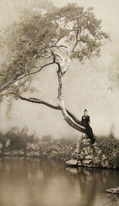 寒树 4-1 | Cold Tree | 新文人画摄影 | Photography of New Literati Painting | 纵780mm | 横450mm | 2012