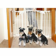 The Bindaboo® Hallway Indoor Pet Gate is perfect any hallway or doorway. Installs easily with no tools. The automatically closing design is handy when your hands are full because it swings closed behi