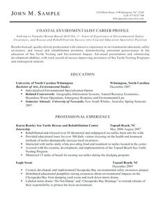 no experience 3 resume format sample resume resume resume examples