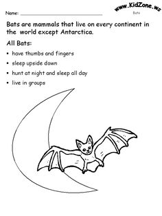 All About Bats Fact Sheet informational text-I wonder if
