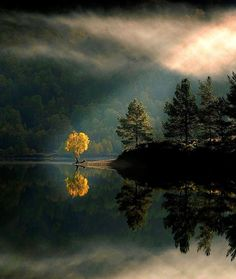 thevoyaging:  Reflection, Glen Affric, Scotland  photo via maricela