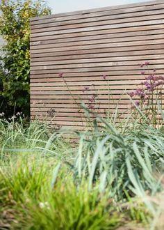 Straight fence with wild greenery Back Gardens, Small Gardens, Outdoor Gardens, Garden Screening, Horizontal Fence, Wooden Fence, Garden Fencing, Pergola Plans, Pergola Kits