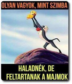 Vicces képek  #humor #vicces #vicceskep #vicceskepek #humoros #vicc #humorosvideo #viccesoldal #poen #bikuci Jokes, Funny, Movie Posters, Husky Jokes, Film Poster, Memes, Funny Parenting, Funny Pranks, Hilarious