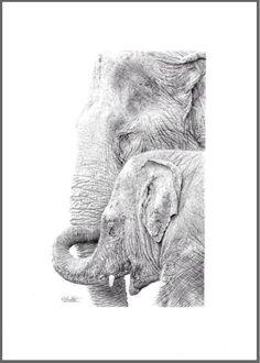Jampaa & Yindee Elephant Art, Wildlife Art, Art Sketches, Amazing Art, Ink, Pets, Illustration, Artist