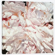 Art for sale by artist Thomas Darnell. Embellished canvas giclee prints of peonies, French landscapes, and abstract art of his original oil paintings. Art Floral, Thomas Darnell, Painter Artist, Beautiful Drawings, Botanical Art, Flower Art, Fine Art America, Fine Art Prints, Instagram