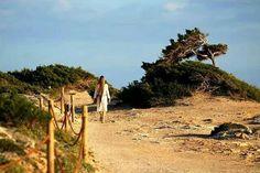 Magical Ibiza
