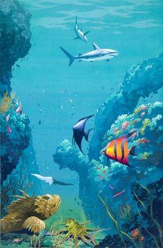 Sea life - Underwater Exploration..