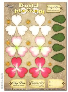 Decoupage A4 Sheet - Build A Blossom, Dog Rose - £0.49 : Card Making + Scrapbooking Craft Supplies