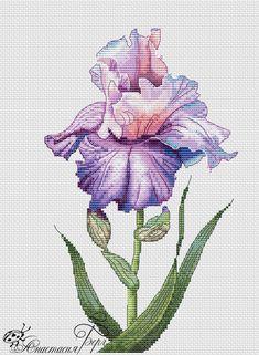 Iris fialkový Cross Stitch Skull, Cat Cross Stitches, Cross Stitch Needles, Cross Stitch Flowers, Counted Cross Stitch Patterns, Cross Stitching, Cross Stitch Embroidery, Hardanger Embroidery, Chicken Cross Stitch