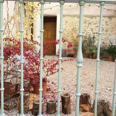 """@oliviasoaps en Instagram: """"El otoño y el patio son un amor bonito que dura poquito ¡venid a verlo! C\Velarde 9 #segovia #oliviasoaps #oliviatheshop"""""""