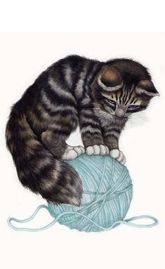 """Maine Coon kitten standing on ball of yarn. From the book """"Baby Pets.""""  Sold at Robin James.net EStore"""