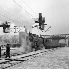 Profil Serban Lacriteanu - Bucurestiul meu drag Train Tracks, Socialism, Time Travel, Trains, Traveling, Romania, Profile, Viajes, Trips