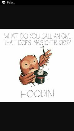 What Do You Call An Owl That Does Magic Tricks? HOODINI!