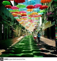 Hundreds of Floating Umbrellas Above a Street
