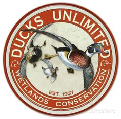 Ducks Unlimited Round Retro Vintage Tin Sign Tin Sign at AllPosters.com