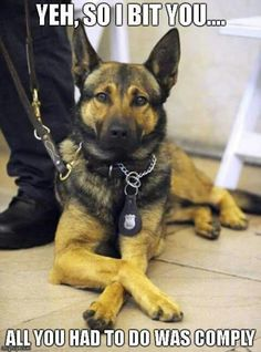 #PoliceK9 .... they have their own set of rules & regulations!