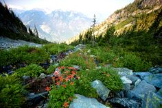 6 reasons to visit North Cascades National Park