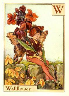 Wallflower Fairy