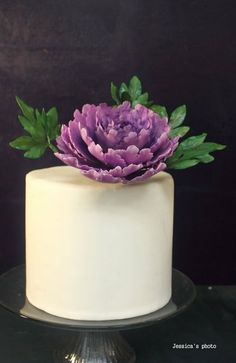 I'm always in love with unmake-up fondant cake with an accent of sugar flowers. Hope you love my very first peony! Fondant Flowers, Sugar Flowers, Mini Cakes, Cupcake Cakes, Cupcakes, Beautiful Cakes, Amazing Cakes, White Fondant Cake, Snow Cake