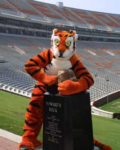 """howard's rock and tiger // I always remember """"meeting"""" the tiger at various games as kids. He was smelly lmao"""