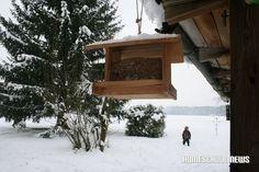 Schnee- und Frost-Impressionen, Snow and Frost Impressions, Vogelhäuschen, Birds house