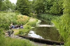 Cultuurpark Westergasfabriek, showing the biomass during the summer time  - Amsterdam, Netherlands
