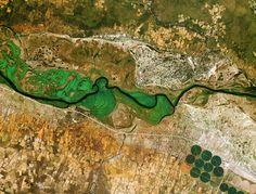 The Okavango River