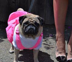 Chloe Bisou in hot pink overalls/jumper