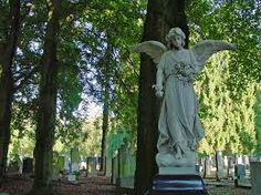 begraafplaats anaheim - Google zoeken