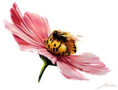 벌 & 꽃 (자연물)