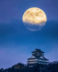 Gifu Castle ▼ 元日の夜の岐阜城と月。→岐阜 Credit: © atsushi.k.photography Mystic Moon, Shoot The Moon, Gifu, Meteor Shower, Japan Art, Art And Architecture, Cherry Blossom, Scenery, Castle