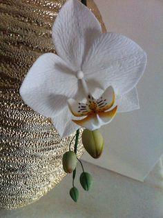Orchidea gum paste
