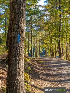 Hike, run or bike to scenic views of Allatoona Lake on the Iron Hill Trail at Red Top Mountain State Park north of Atlanta