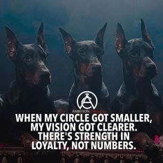 Keep your circle of trust tight. LOYALTY is KEY with me, not numbers. Motivacional Quotes, Loyalty Quotes, Best Quotes, Life Quotes, Qoutes, Epic Quotes, Mindset Quotes, Woman Quotes, Ambition