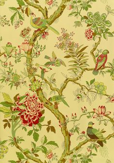 Thibaut PAPAGAYO wallpaper                                    Tobacco, <br />                                     T6061, <br />                                     Collection Anniversary from Thibaut