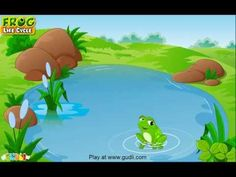 Learn all about the Frog Life Cycle at www.gudli.com