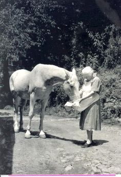 Mary Breckinridge, Founder of Frontier Nursing Service Old Pictures, Old Photos, Vintage Photographs, Vintage Photos, Animals And Pets, Cute Animals, Vintage Nurse, All About Horses, My Old Kentucky Home