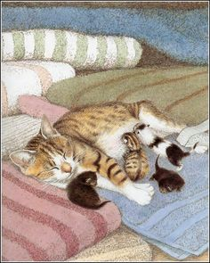 """From """"The Tabitha stories"""", written by A.W. Wilson and illustrated by Sarah Fox-Davies."""