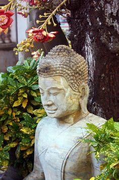 Unadorned Buddha - Royal Palace in Phnom Penh