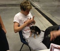 Niall and a puppy!! Please help me!