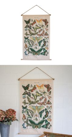 Who thought a scientific diagram could be so vibrant? A wondrous collage of beautiful butterflies, this canvas banner makes an elegant impression in living rooms, dens, and bedrooms--whether or not you...  Find the Entomology Canvas Banner, as seen in the Art Collection at http://dotandbo.com/category/decor-and-pillows/for-the-wall/art?utm_source=pinterest&utm_medium=organic&db_sku=113206