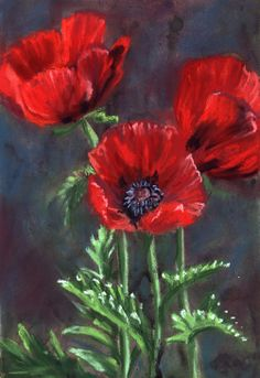 red-poppies-, Poppies Sketchbook Journal, How to Draw a Poppies, Flower Sketching, Botanical Drawing Sketchbook by Nature Artist Karen Johnson #flowers #sketching #wonderweirdedwildlife