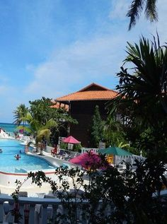 Mangos Jamaica - Adults Only - All Inclusive