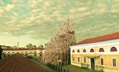 El paisaje romano, con bambú en el horizonte. El Macro, el antiguo matadero reconvertido en centro de arte contemporáneo.