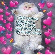 Top Funny Memes About Minecraft & Minecraft Meme Enderman Cute Cat Memes, Cute Love Memes, Cute Quotes, Funny Memes, Cute Couple Memes, Jokes, Top Funny, Funny Cute, Hilarious