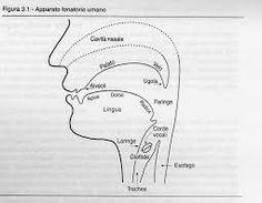 Risultati immagini per tavola dei simboli fonetici inglesi