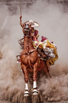 15 by Adrian Dovali / Beautiful Horse Pictures, Beautiful Horses, Mexican Rodeo, Mexico National Team, Mexican Artwork, Mexican Heritage, Mexico Art, Mexican American, Western Art